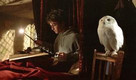 """Вселенная Гарри Поттера и """"Хроники Нарнии"""". Кто круче?"""